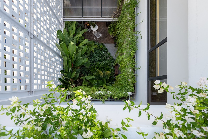 Cảnh quan sân vườn trong thiết kế nội thất biệt thự liền kề
