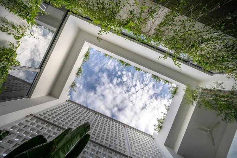 Giếng trời độc đáo trong thiết kế nội thất biệt thự liền kề