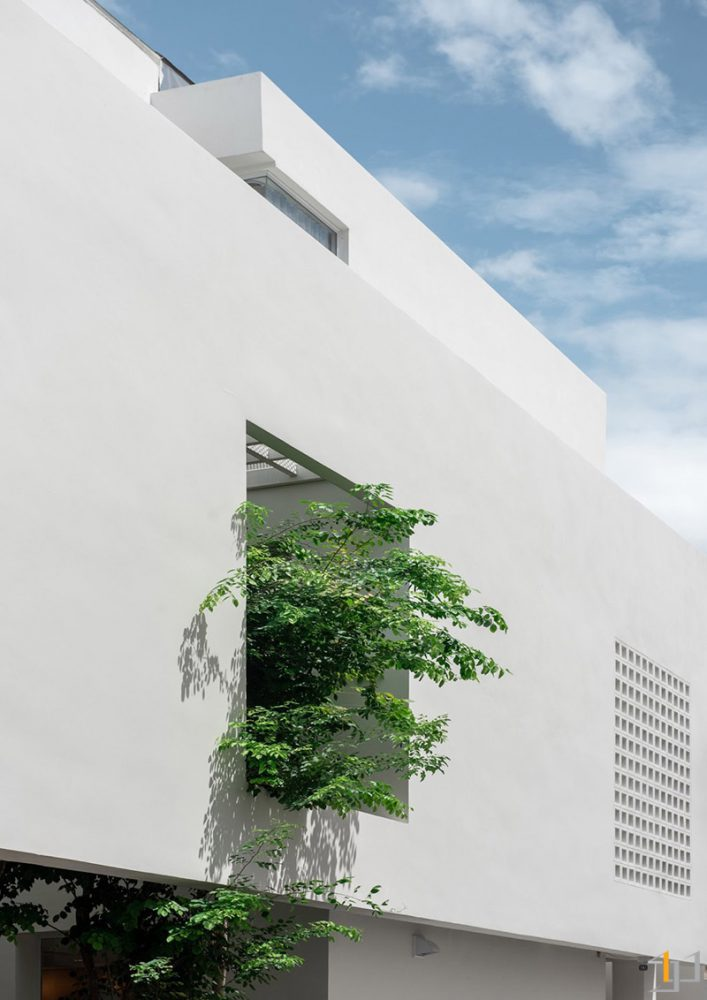 architecture-with-trees
