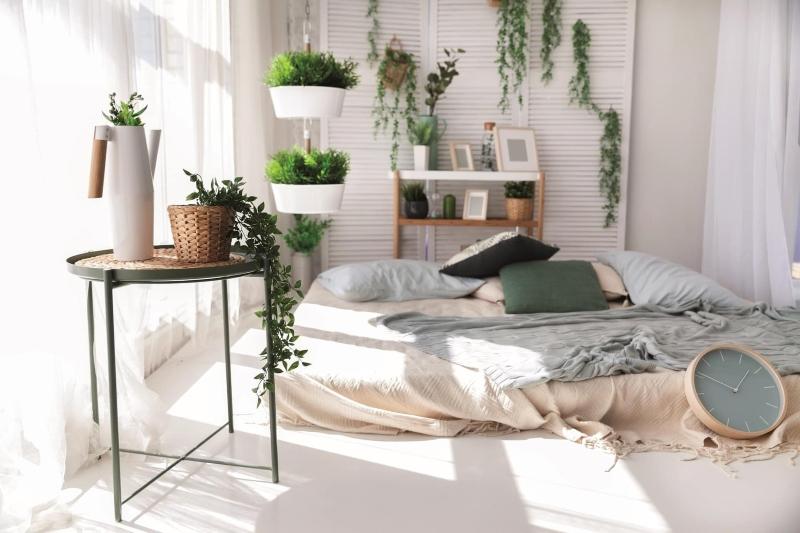 Trang trí phòng ngủ bằng cây xanh
