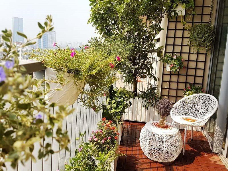 Thiết kế ban công trồng cây cho chung cư