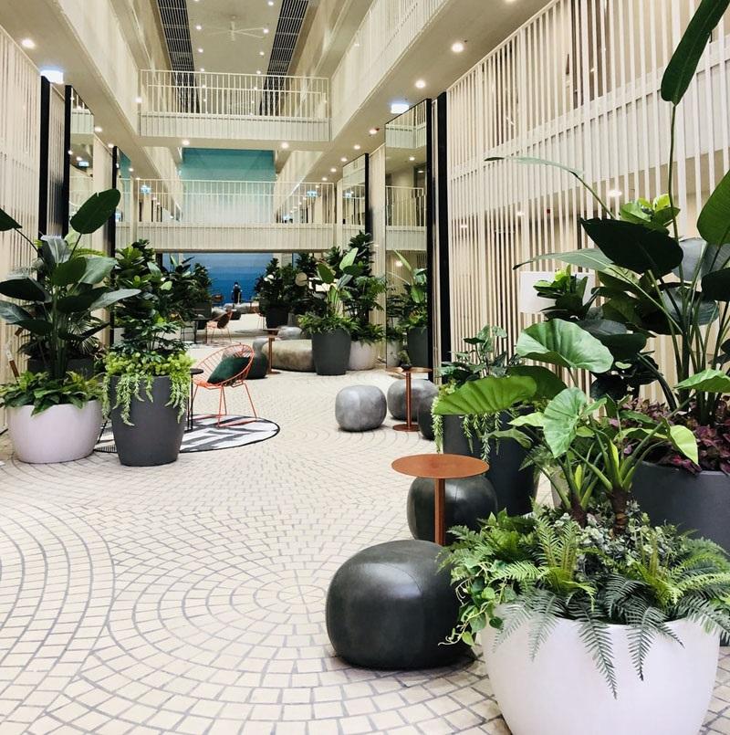 Khách sạn sử dụng không gian xanh